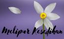 5 Langkah Efektif untuk Melipur Kesedihan